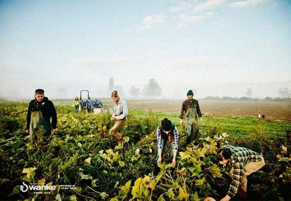 5 dicas para se tornar uma pessoa mais sustentável
